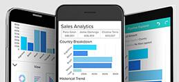 Wave Analytics Success Plan