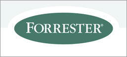 Forrester Wave Report - Social Enterprise