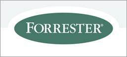 Forrester Wave Report 2014