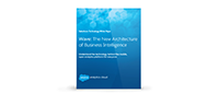 The New Architecture of Business Intelligence White Paper.
