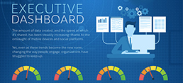 Government Executive Dashboard