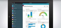 Salesforce Identity Demo