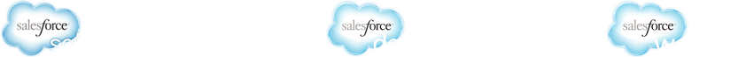 Sales Performance Accelerator