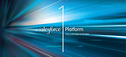 Salesforce1 App Guide