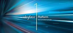 Salesforce1 App Guide
