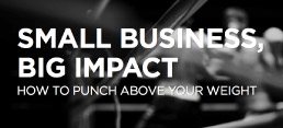 Punch Above Your Weight: Small Business, Big Impact