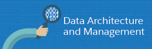 Data Architecture and Management