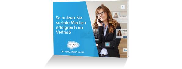 Handbuch für den erfolgreichen Vertrieb über soziale Medien – E-Book