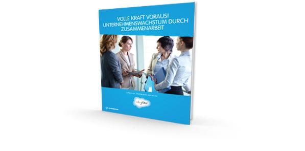 E-Book zur Zusammenarbeit beim Vertrieb