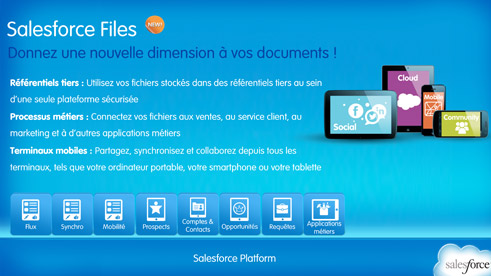 salesforce-file-screenshot