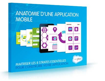 E-book Anatomie d'une application mobile