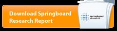 Download Springboard Research Report