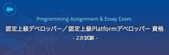 Programming Assignment & Essay Exam  認定上級デベロッパー / 認定上級Platformデベロッパー 資格  -2次試験-