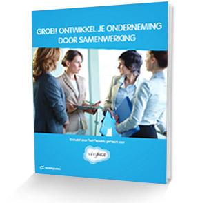 E-book: samenwerken bij verkoop