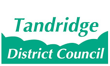 Image result for Tandridge Council logo