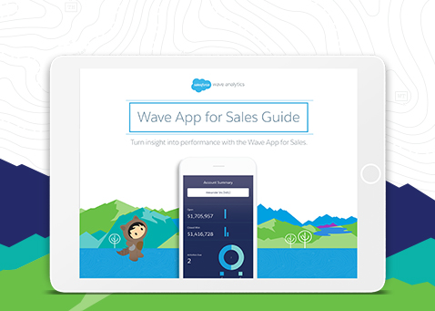 Sales Wave Analytics-guide
