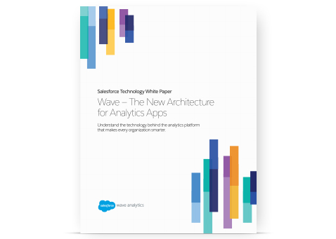 Salesforce Wave Analytics