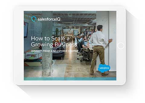 How to Scale a Growing Business: Insights From a Salesforce Startup