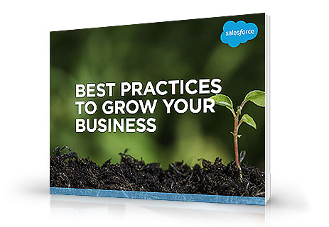 Best Practices to Grow Your Business e-book