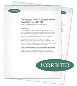 Forrester's 2014 Wave: Enterprise Public Cloud Platforms