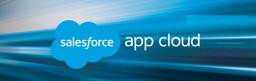 Get Salesforce Platform App Guide and Gallery.