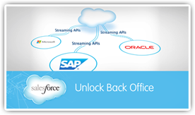 Unlock Your Back Office with the Salesforce Platform