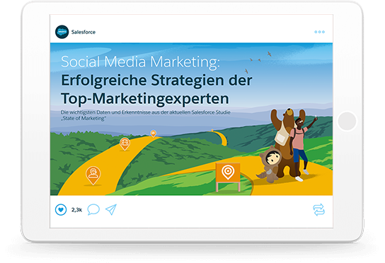 Social Media Marketing: Erfolgreiche Strategien der Top-Marketingexperten