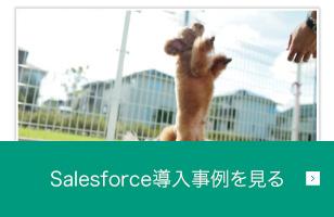 Salesforce 導入事例を見る